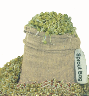 SM100 - Hemp Sprout Bags